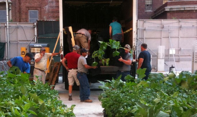 riverpark-pop-up-farm-manhattan.jpg