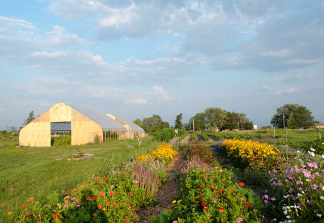 The agrihood features paths for cycling and cross-country skiing, community gardens, anda 4-acre organic farm
