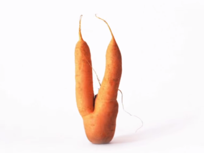 UglyCarrot.png