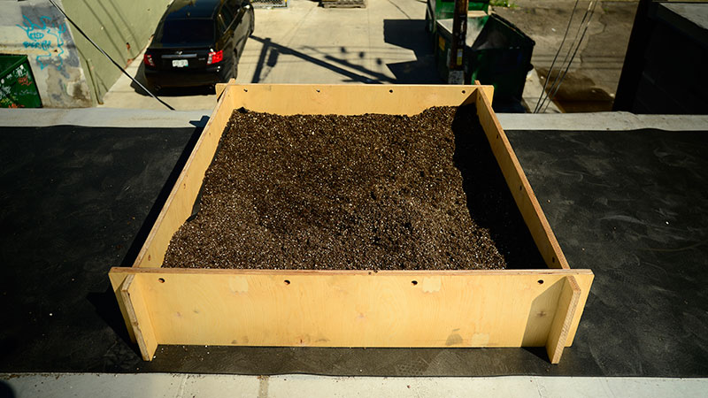 product-growsquare-01.jpg