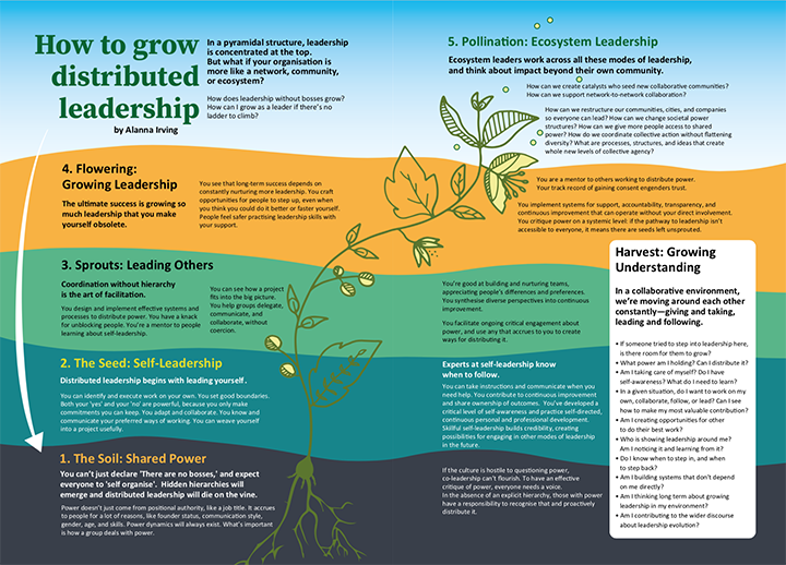 How to grow distributed leadership
