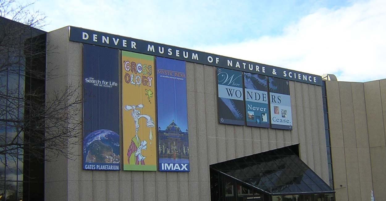 Denver museum of nature and science public library