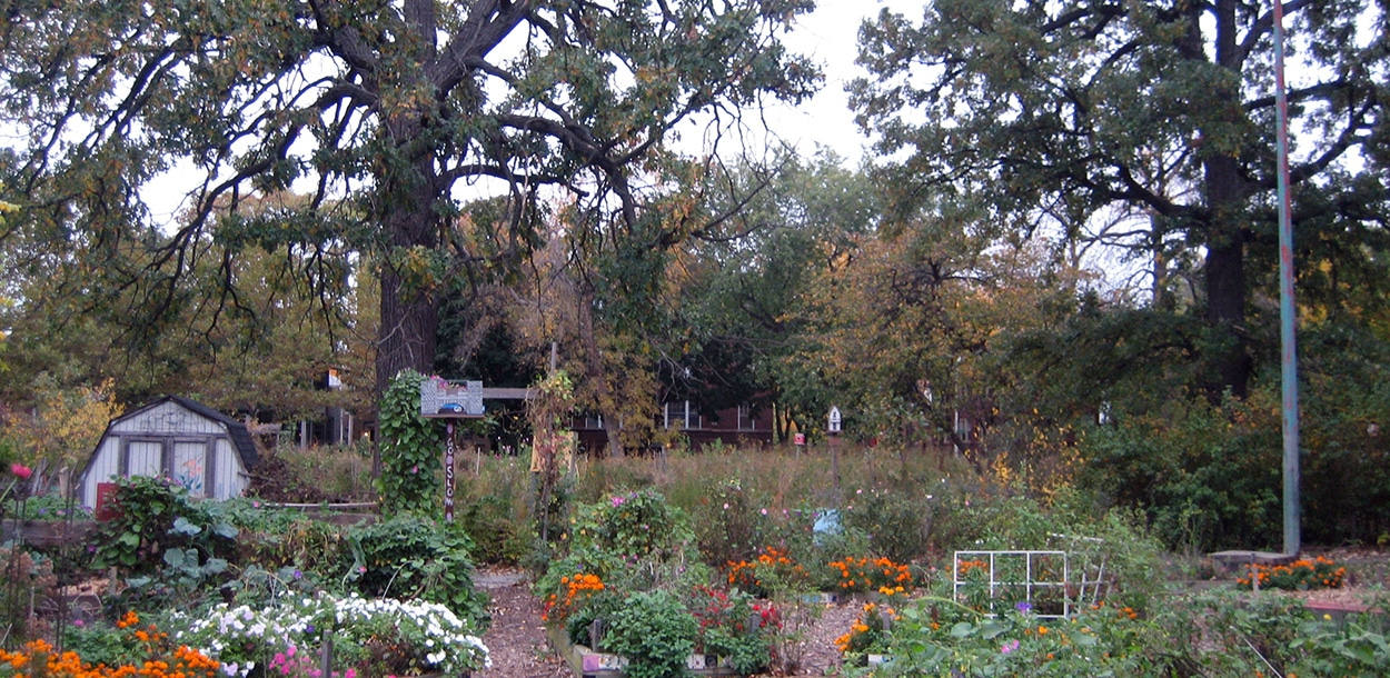 Community Garden Chicago- Large Lots