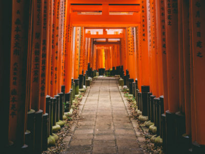 The pandemic isn't a portal, yet | Torii gates at the Fushimi Inari-taisha shrine in Kyoto, Japan. Torii gates mark the entrance to the sacred from the profane. Credit: wallpaperflare.com