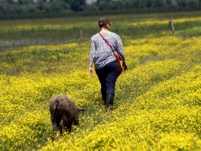 Biodiversity flourishes as farmers return to collective ownership