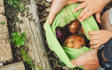 Onions in a reusable mesh bag